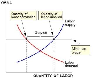 min wage S&D model