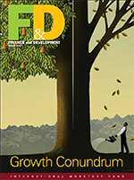 cover-fd